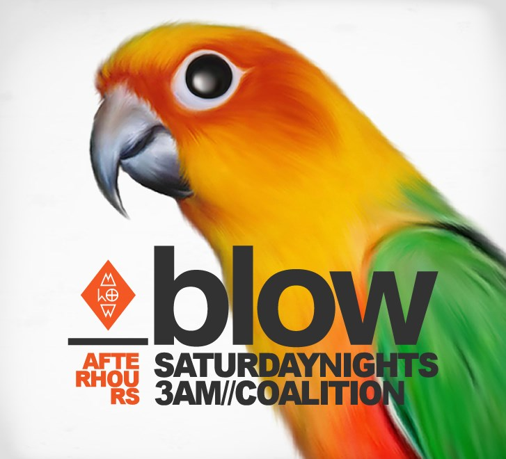 Saturday - BLOW -  (BLOW_website_a.jpg)